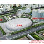 中華職棒:需要不怕下雨的大巨蛋球場